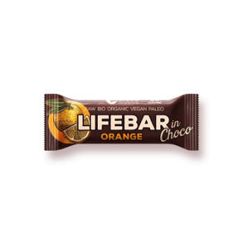 Organic Raw Chocolate Lifebar